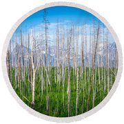 Vast Scenic Montana State Landscapes And Nature Round Beach Towel