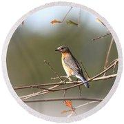 105319 - Bluebird Round Beach Towel
