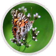 1074- Butterfly Round Beach Towel
