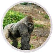 10899 Gorilla Round Beach Towel