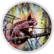 11452 Red Squirrel Sketch Square Round Beach Towel