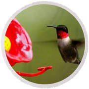 1164 - Hummingbird Round Beach Towel