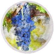 Red Grapes On The Vine Round Beach Towel