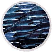 Shark Skin, Sem Round Beach Towel