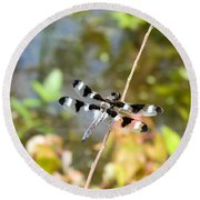 12 Spotted Skimmer Dragonfly 2 Round Beach Towel