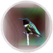 1281 - Hummingbird Round Beach Towel