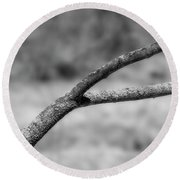 Bare Tree Branches In Early Spring Round Beach Towel