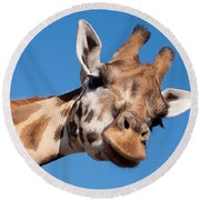 Giraffe Round Beach Towel