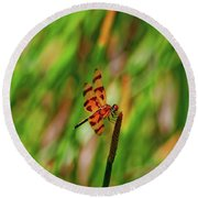 15- Dragonfly Round Beach Towel