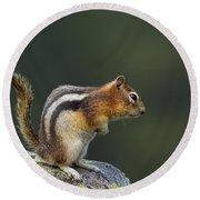 Golden-mantled Ground Squirrel Round Beach Towel