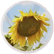 Nice Sunflower Round Beach Towel