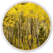 Rocky Mountain Autumn Round Beach Towel