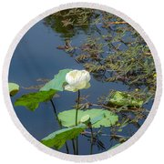 White Lotus Flower Flower Lotus Nature Summer Green Plant Blossom Asian Round Beach Towel