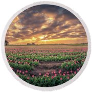 180 Degree View Of Sunrise Over Tulip Field Round Beach Towel