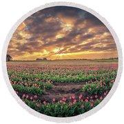 180 Degree View Of Sunrise Over Tulip Field Round Beach Towel