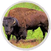 Bison Round Beach Towel