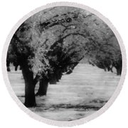 Apple Orchards In Dixon Round Beach Towel