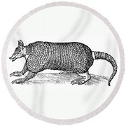 Armadillo Round Beach Towel