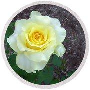 Australia - Yellow Rose Flower Round Beach Towel