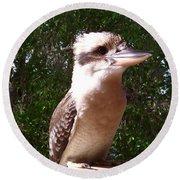 Australia - Kookaburra Full Body Look Round Beach Towel