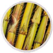 Bamboo Stalks Round Beach Towel