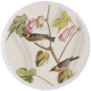Bay Breasted Warbler Round Beach Towel