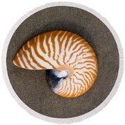 Bellybutton Nautilus - Nautilus Macromphalus Round Beach Towel