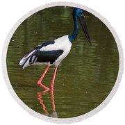 Black-necked Stork Round Beach Towel
