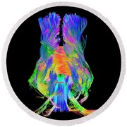 Brain Fiber Tracts, Dti Scan Round Beach Towel