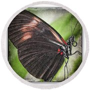 Brush-footed Butterfly Round Beach Towel