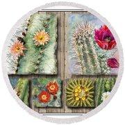 Cactus Collage Round Beach Towel