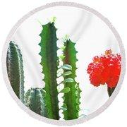 Cactus Plants Round Beach Towel