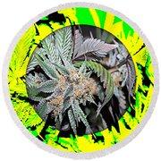 Cannabis 420 Collection Round Beach Towel