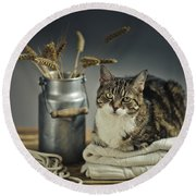 Cat Portrait Round Beach Towel