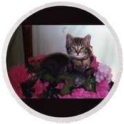 2 Cats In The Flowers Round Beach Towel