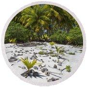 Coconut Palms On A Polynesian Beach Round Beach Towel