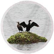 Cormorants Port Jefferson New York Round Beach Towel