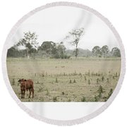 Country Cow Round Beach Towel