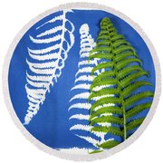 Cyanotype Print, Fern Round Beach Towel