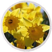 Daffodils In The Sunshine Round Beach Towel