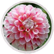 Dahlia Named Hawaii Round Beach Towel