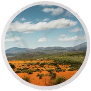 Daisies Blooming In Namaqualand 2 Round Beach Towel
