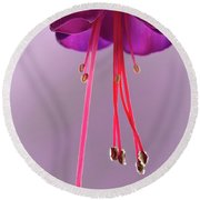 Dance Of The Fuschia Round Beach Towel