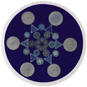 Diatom Arrangement Round Beach Towel