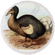 Dodo Bird Raphus Cucullatus, Extinct Round Beach Towel