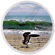 Expecting To Fly Round Beach Towel