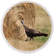 Female Eastern Wild Turkey Round Beach Towel