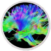 Fiber Tracts Of The Brain, Dti Round Beach Towel