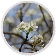 Flowering Trees Round Beach Towel