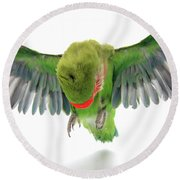 Flying Parrot  Round Beach Towel